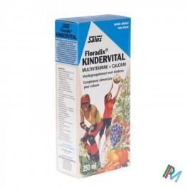 Floradix Kindervital 250 elixir