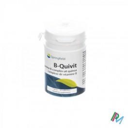 Springfield B-Quivit 100 pdr pot